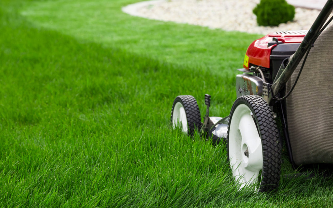 Guide On Marketing Your Lawn Care Service